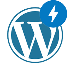 AMP for WordPress development company in chennai